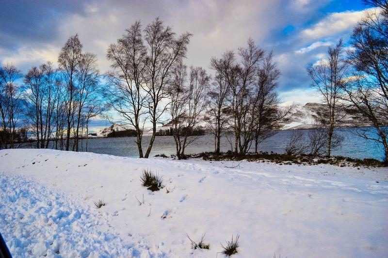 Winter Days