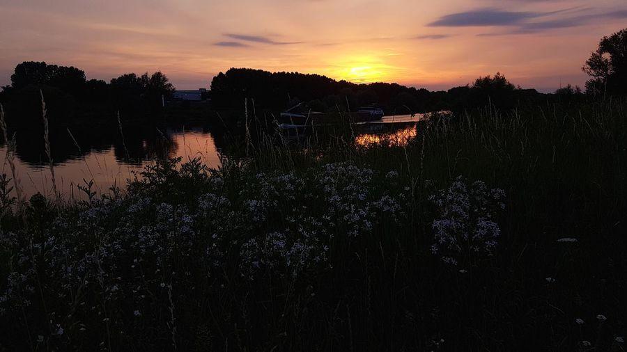 sunset maas My