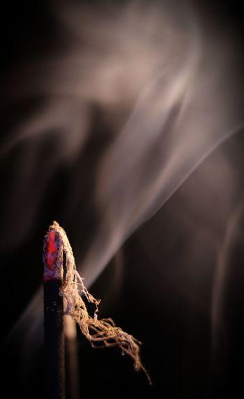 Incense Canon 200D Sl2 Ef50mmf18stm Incense Dark Darkbackground Smoke Burnning Incent Nopeople