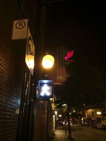 Street Photography Street Light Montréal