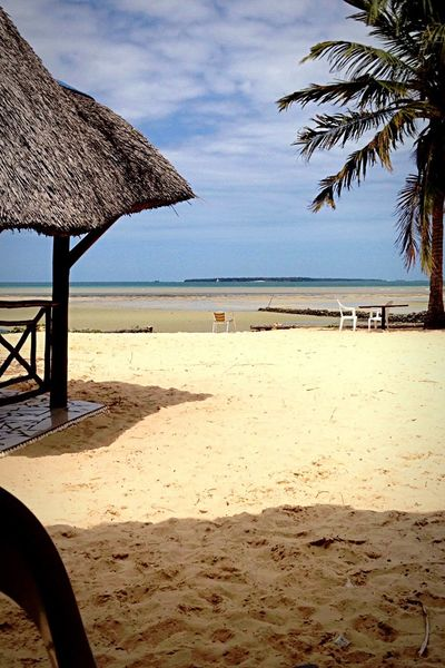Pure Nature Beach Sand Sea Thatched Roof Water Nature Shore Tranquil Scene Sky Summer Scenics Beauty In Nature Vacations Outdoors Horizon Over Water Day Shelter Palm Tree Calm Oceanside Travel Destinations Tanzania Africana Eye Em New Here