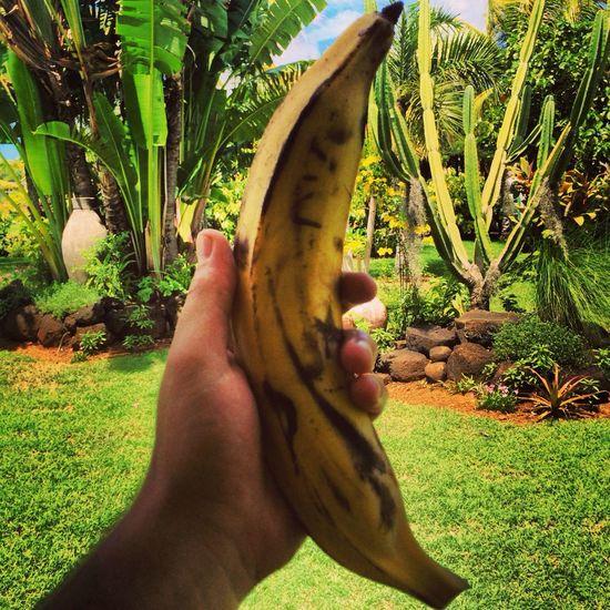 Big Banana Enjoying Life Check This Out In Heaven