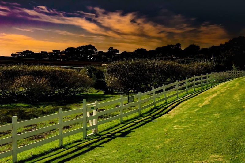 Mission Valley Ranch in Carmel, CA. Owned by Clint Eastwood. Tree Sky Nature Sunset Scenics Tranquility Tranquil Scene Beauty In Nature Outdoors Growth Cloud - Sky No People Grass Day Carmel California California Love California Tranquility Fence