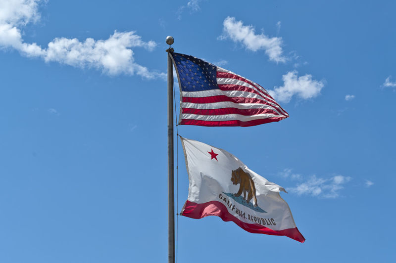 An American flag and a California Republic flag weaving on a blue sky background. Concept for freedom, patriotism and independence American California Democracy Government July Liberty National USA America Blue Daylight Flag Fluttering Freedom Glory Independence Patriotism Pole Republic Sky Stars Striped Waving West Wind