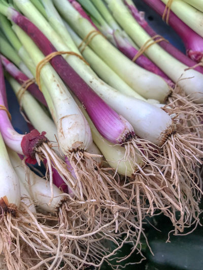 Farmers Market Close-up Day Food Food And Drink For Sale Freshness Healthy Eating High Angle View Indoors  Large Group Of Objects Market No People Onion Pink Color Purple Raw Food Root Vegetable Spring Onion Still Life Vegetable Wellbeing