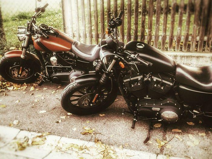 Motorcycle No People Day EyeEmNewHere EyeEm Best Shots Harleydavidson Transportation Outdoors Motorcycle Black Red