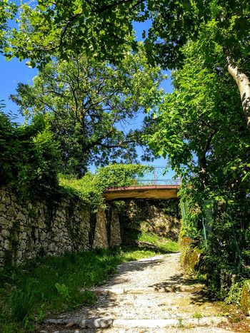 Nature Photography Nature Colors Littlebridge Sacromonte Varese