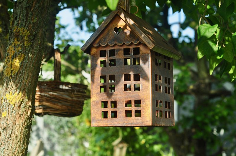 Architecture Birdhouse Building Exterior Built Structure Close-up Day Focus On Foreground Garden Low Angle View No People Outdoors Tree Tree Trunk Wood - Material