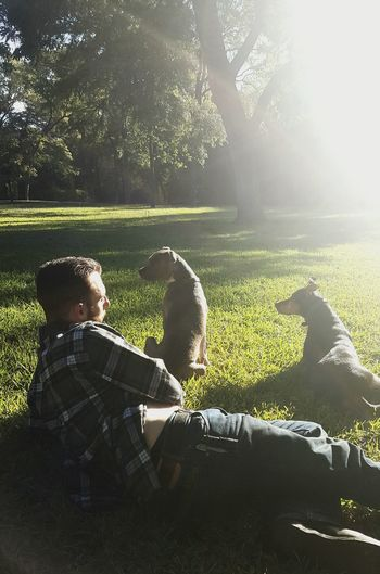 Park Dogs Good Morning Soakingupthesun Daylight Green Austin Texas Hydepark