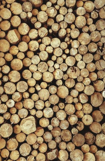 Reading between the Ring s Abstract The Week on EyeEm Backgrounds Forestry Industry Woodpile Full Frame Textured  Pattern Timber Stack Log Close-up Tree Ring Wood Grain Deforestation Knotted Wood Hardwood Lumber Industry Axe Environmental Damage Floorboard Oak Tree Pine Wood Fossil Fuel Wood Paneling Repetition Abstract Backgrounds Firewood Pile Tree Stump