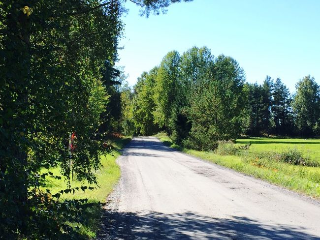 Nature Nature Road Road On The Road Peter Wernqvist Wernqvist Sunny Day Sunny
