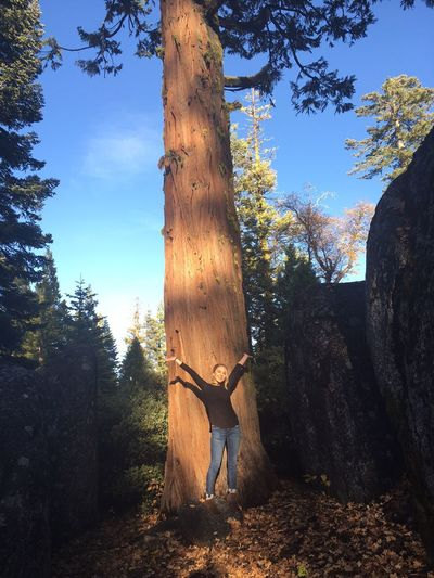 Tree Full Length One Person Real People Tree Trunk Nature Sierra Nevada Strawberry California cCasual ClothingsSkydDaygGrowthoOne AnimalfForestwWood - MaterialoOutdoorsdDomestic AnimalssStandingmMammalmMenbBeauty In Nature
