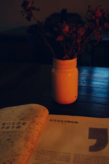 reading in dim light Vase Flower Thought Book Reading Dim Light Orange Light Peaceful Alone Time Muse Table Knowledge