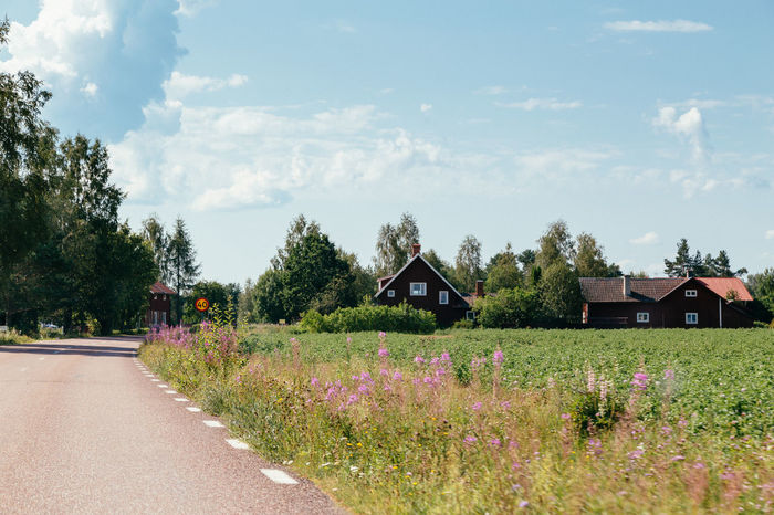 Swedish countryside Architecture Beauty In Nature Building Exterior Built Structure Cloud - Sky Dalarna Day Flower Fragility Growth Nature No People Outdoors Plant Sky Summer Sweden Swedish Swedish Nature Tree Tällberg