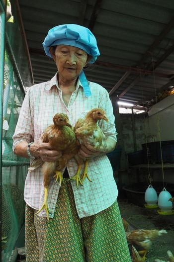 Senior Woman Holding Chickens At Farm