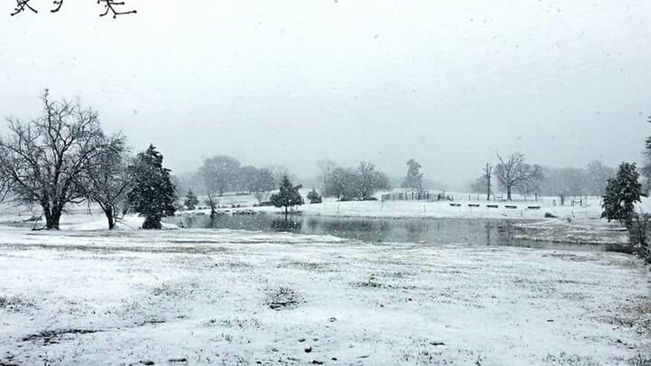 Texas snow. Snow ❄ Pond Winter Snow Texas Snow Beautiful Nature Winter Seaon