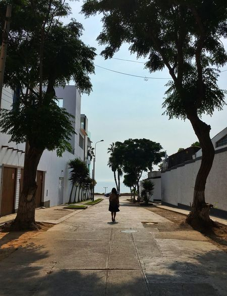 Afternoon stroll EyeEmNewHere Tree Architecture Rear View Building Exterior Built Structure Full Length One Person Outdoors City First Eyeem Photo