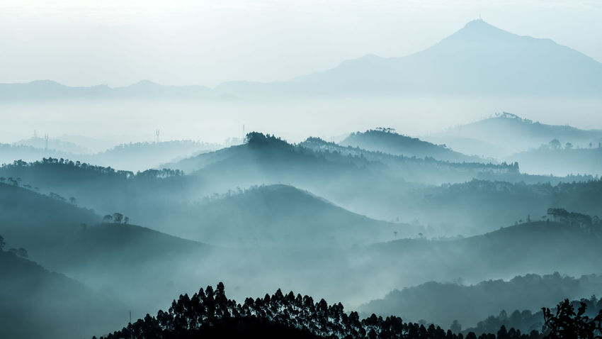Bijia Hill winter scenery Bijia Hill Guangdong China Maoming Beauty In Nature Day Ink Mountain Nature Outdoors Sky