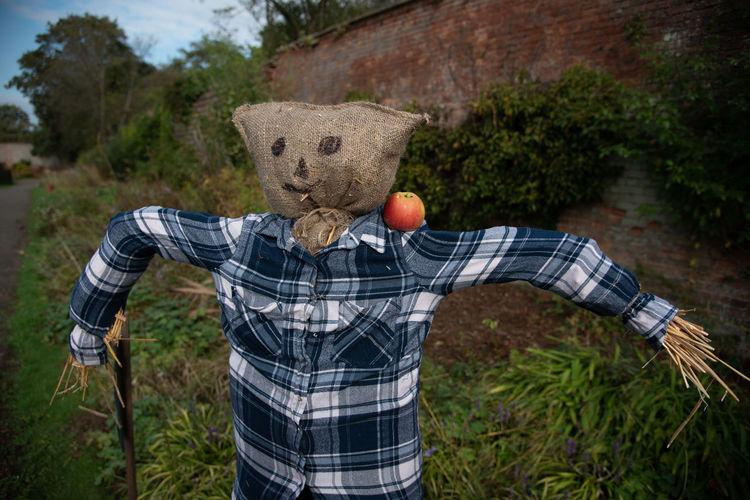 Scarecrow on land