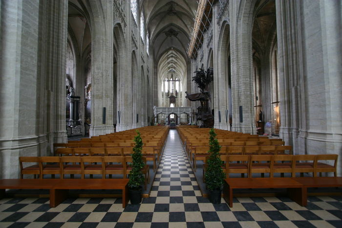 Aalst Aisle Arch Architectural Column Architectural Feature Church Day Diminishing Perspective Flooring In A Row Indoors  Interior Long Narrow Pew Place Of Worship Religion Spirituality The Way Forward Tranquility Walkway Wide Angle View