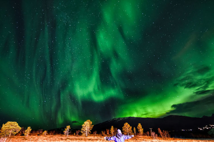 Rear View Of Person Standing Against Northern Lights At Night