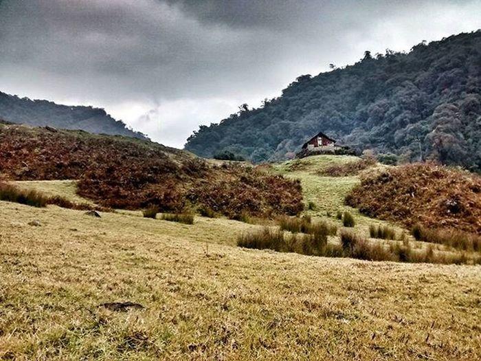 A cottage in the woods.... Wishful thinking. Nagaland Dzülakie IndiaTrail Vscocam Vscogrid Travelgram Instatravel