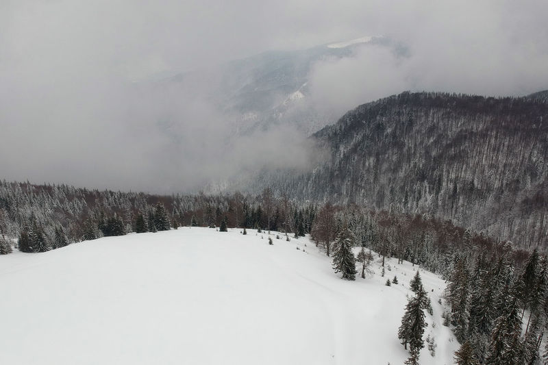 Winter aerial view above the forest Drone  Hills Light Nature Travel Trees Winter Aerial Forest Landscape Mountain Ranca Scenics Snow Transalpina White