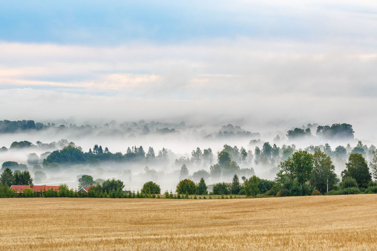 Beautiful landscape view with morning fog in the countryside