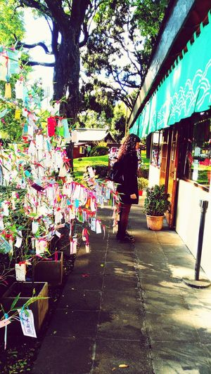 Real People Day One Person Tree Outdoors People Street Streetphotography Japan Culture Color Colors Multi Colored Jardin Japones Japan Park Trees Mujer Muchacha Chica Tienda Message Deseos Dreams Local Culture