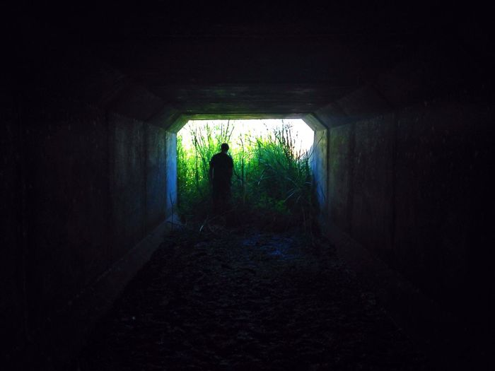 life is better Underground Notes From The Underground Tunnel Tunnel Vision Under Pressure Green Green Color Light And Shadow Silhouette Light In The Darkness Shine Plants 🌱 EyeEm Best Shots EyeEm Nature Lover Eye4photography  EyeEm Gallery EyeEm Best Edits EyeEm Best Shots - Nature Exploring New Ground
