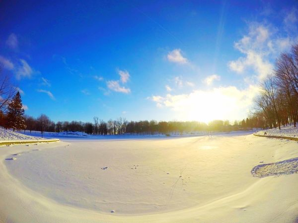 Apple Montreal :) GoPrography Montréal Goprooftheday First Eyeem Photo Shoot Your Life Amazing View Wintertime Winter Wonderland Winter Sky Canada Snow ❄ Snow Day Mountroyal Iphone6s Portrait Photooftheday Photoshoot Photowinter