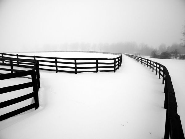 HORSE FENCE Horizon Over Snow Horse Fence SNOW STORM IN FREEHOLD WHITE AND COLD Abstract Photo Iphonephotography Beauty In Nature Clear Sky Cold Temperature Composition Photography Day Hand Rail Railing Sky Snow Winter