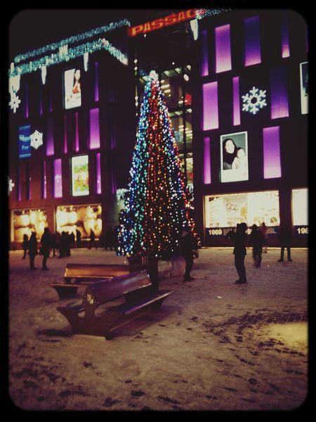 last december:) Walking Around