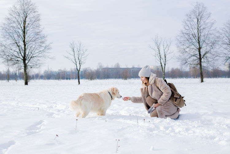 View of dogs on snow covered field during winter