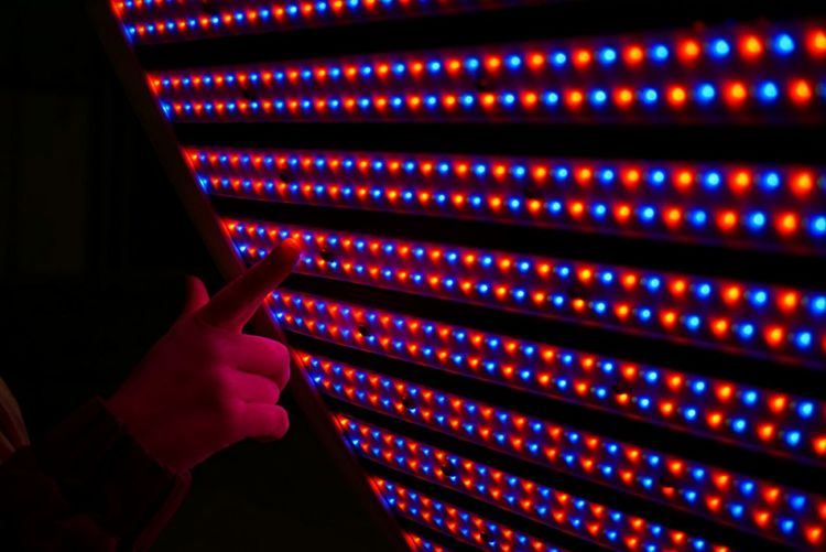 Cropped hand touching illuminated lights