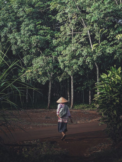Rear view of woman walking on street amidst trees in forest