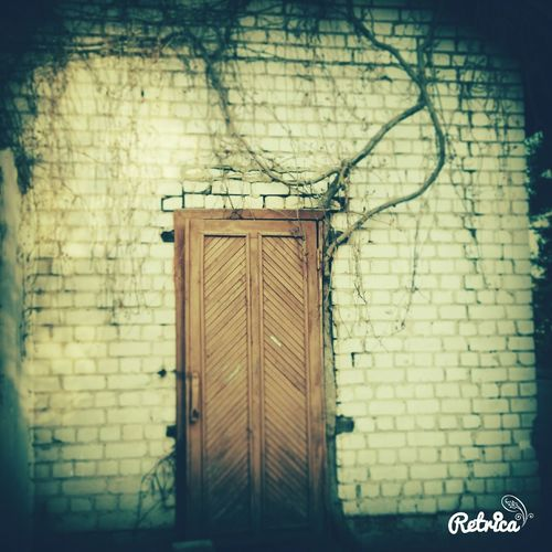 Hello World Potography In The Day In The Night Waiting Old Doors Tree Morning