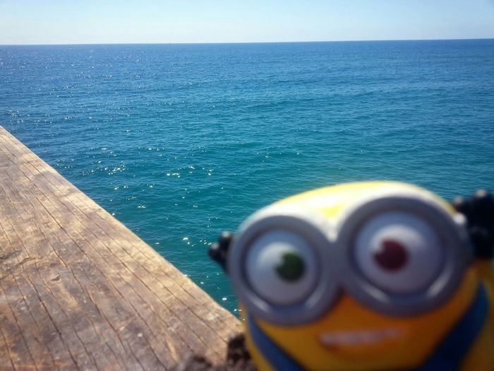 Photo bombed by a minion.... My Propart Beachphotography Color_boom The Adventure Handbook