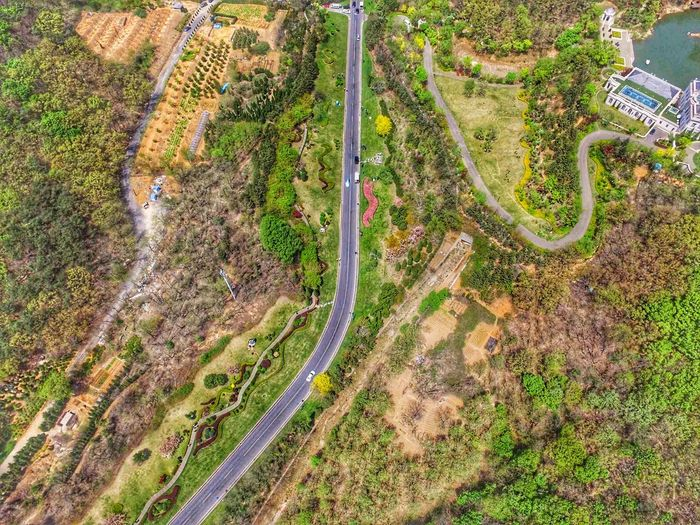 Road Dji Overlook Road Aerial Photograph Aerial View High Angle View Tree Water Grass Plant Landscape