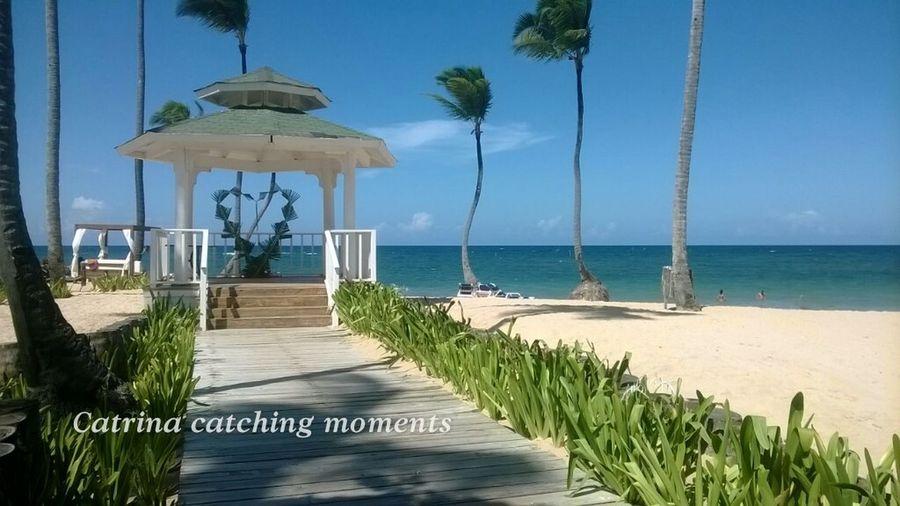 Taking Photos Beach Caribbean Dominican Republic Punta Cana Wedding Decoration Wedding Locations Bechwedding Clear Sky Whitw Sand