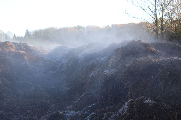 Steam rising off dung heap on a cold morning