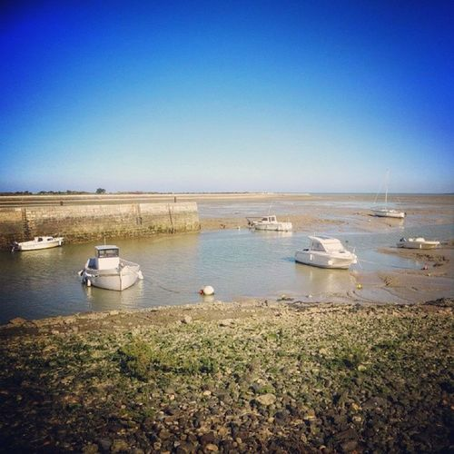 Low tide, Island of Ré. Happy Saturday ☺☀ France Franca Kitkat Francia Lowtide  Igersfrance Iphone6 Ilederé