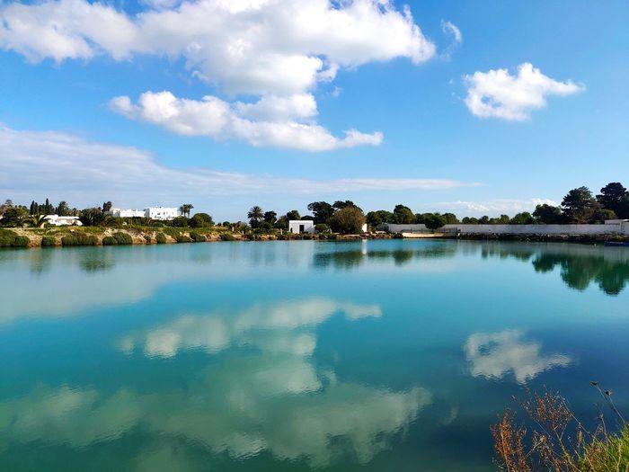 Water Tree Lake Blue Reflection Symmetry Sky Landscape Cloud - Sky