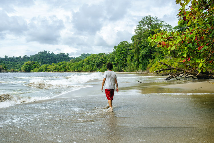 Man walking by tropical beach in Manuel Antonio National Park, Costa Rica. Costa Rica Man Manuel Antonio Manuel Antonio National Park Costa Rica 🇨🇷 Nature Summertime Tourist Travel Trip Vacations Adventure Beach Caribbean Caucasian Idyllic One Person Real People Sand Sea Summer Tourism Travel Destinations Travelers Tropical Vacation