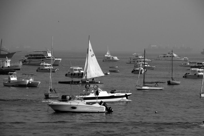 Black And White Photography Harbor Journey Mode Of Transport Multiplicity Outdoors Sailboat Sailing Sea Water Waterfront