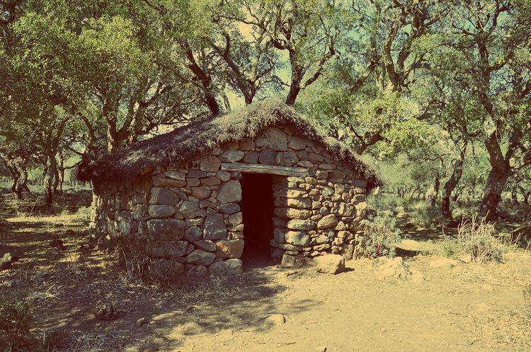 Ancient hut Built Structure Architecture Day No People Building Exterior Outdoors Nature Sky Hut Summer Vintage Style Retro Style Cork Trees Cork Tree Trees Ancient Hut Old Hut