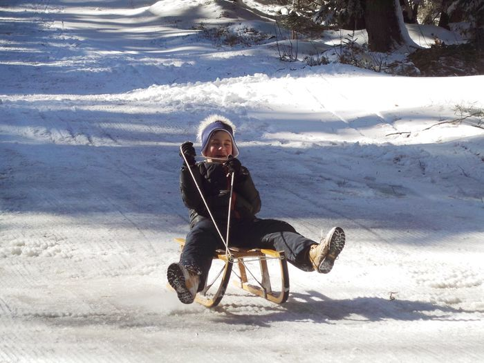 Boy Riding Sled On Snow