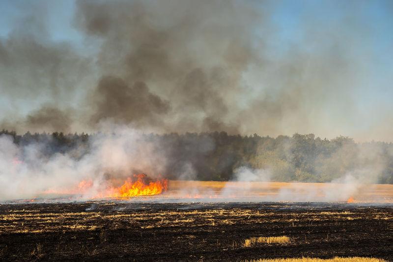 Panoramic shot of bonfire