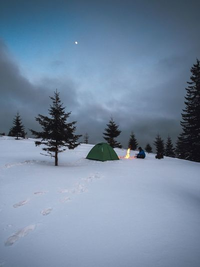 Snow Winter Cold Temperature Sky Nature Tranquility Tranquil Scene Mountain Scenics - Nature Land Beauty In Nature Tree Environment Moon Covering No People Landscape Night Non-urban Scene Snowcapped Mountain Pine Tree Camping Campfire People People Watching