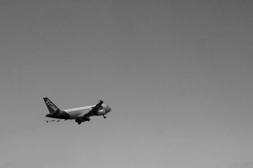 Black & White Air Vehicle Airplane Black And White Blackandwhite Clear Sky Copy Space Day Flying Julhofragaphotography Low Angle View Mid-air No People Outdoors Sky